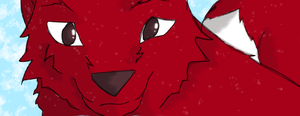 Red Sled Dog in Snow by Malakhite