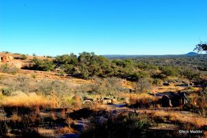 Enchanted Rock Expedition by moonlightrose44