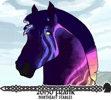 20150 Frank by NorthEast-Stables