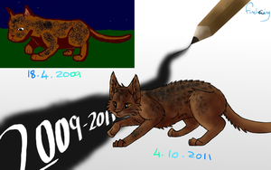 2009-2011 Improvement by Finchwing