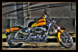 Harley Sportster - Low Life by outopian