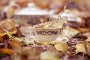 Splashy autumn tea by Pamba
