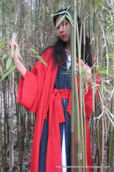 Red Wuxia Robes by costumemercenary
