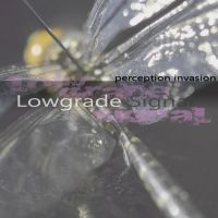 LOWGRADE SIGNAL - perception invasion by RoadKillConcepts
