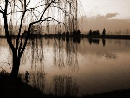 11.Reflection by lusas
