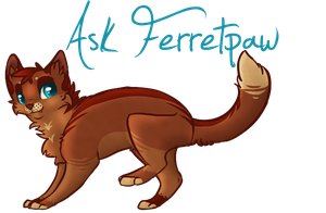 SotS | Ask Ferretpaw by Allizia