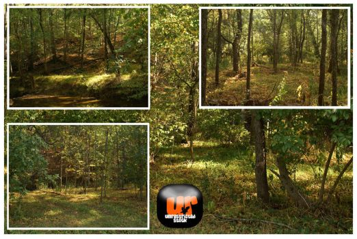 Forests Pack by Unrestricted-Stock