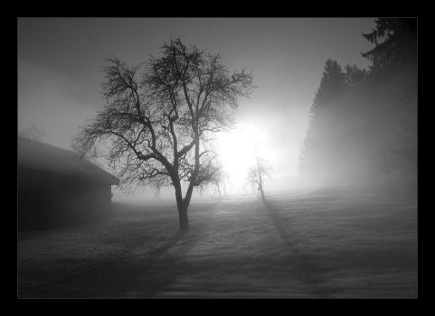 With The Fog Comes The Silence by pitchblacknight