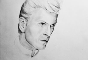 BOWIE by loladrawsthings