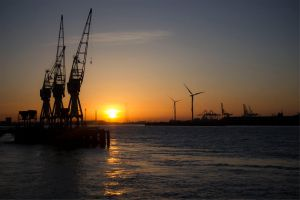 3 Cranes Sunset by wasted49