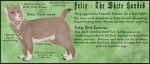 Felix Character Sheet FINAL by WeaselWomanCreations