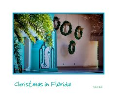 Christmas in Florida by TomFawls