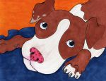 Red and White Pit by littlekelly