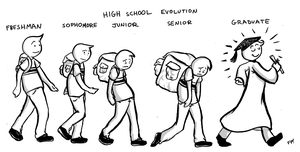 High School Evolution by fish-puddle