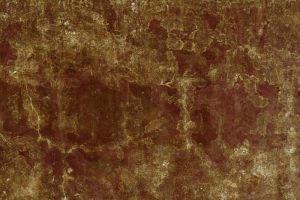 brown abstract texture II by beckas