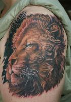 Majestic Lion by Phedre1985