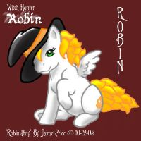 WHR Robin Pony 2005 by customlpvalley