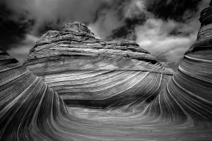 A Black and White View by coulombic
