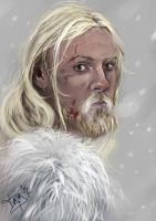 Viking new version by Heteferes