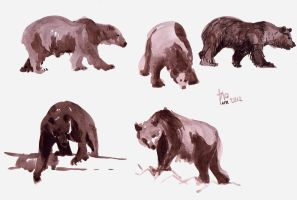 sketch of bear 2012 by WindOfSmile