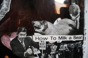 how to milk a seal by FigoTheCat