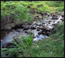 Babbling Brook by jewelslove