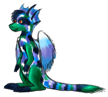 pheatherwing draik design by zookydragon