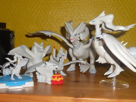 My Reshiram collection by gibina4ever
