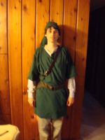 Link costume by bws2cool