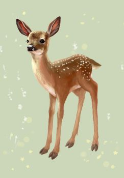 fawn postcard by furiouskitten