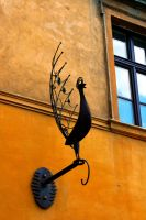 Peacock Ornament. by johnwaymont