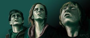 Deathly Hallows Trio FTW by EmmilyTM