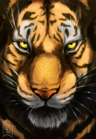 tiger by Brevis--art
