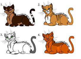 Cat Adopts 2 +Closed+ by RosaliewolfAdopts