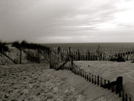 fence on the beach III by star--crossed