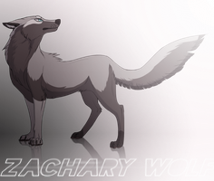 Wolf with unusually long tail. by ZacharyWolf