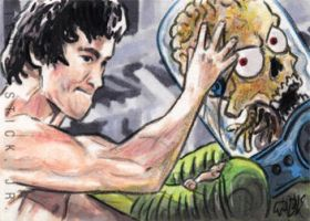 Bruce Lee Attacks by tdastick
