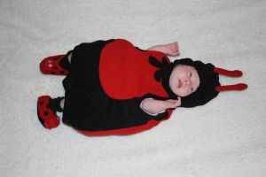 Baby - Ladybug by paradox11-stock
