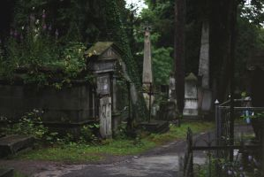 Old cemetery by dammmmit