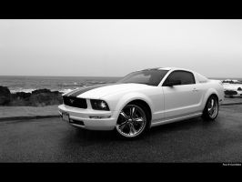 California Concepts Mustang by NitzkaPhotography