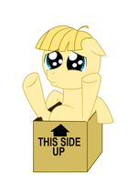 Filly Box by JD-Deviations