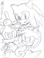 sketch for team sonic by SMSSkullLeader