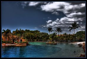 Dolphin Cove Sea World. by Firey-Sunset