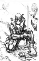 DeadPool BOOM (finished) by MLAYCO