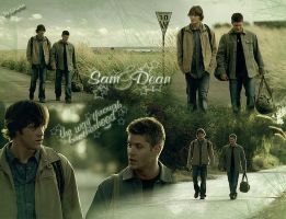Sam and Dean - The way by LiFaAn
