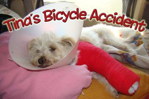 Tina's Bicycle Accident by EmmaL27