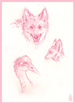 Zoo sketches headshots by griffsnuff