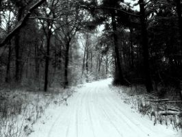 Winters Road by NiDiMe