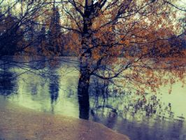 Beautiful tree under the floods by Morsoilija