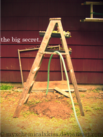 The Big Secret by myxchemicalxkiss
